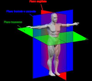 Geometria allenamento